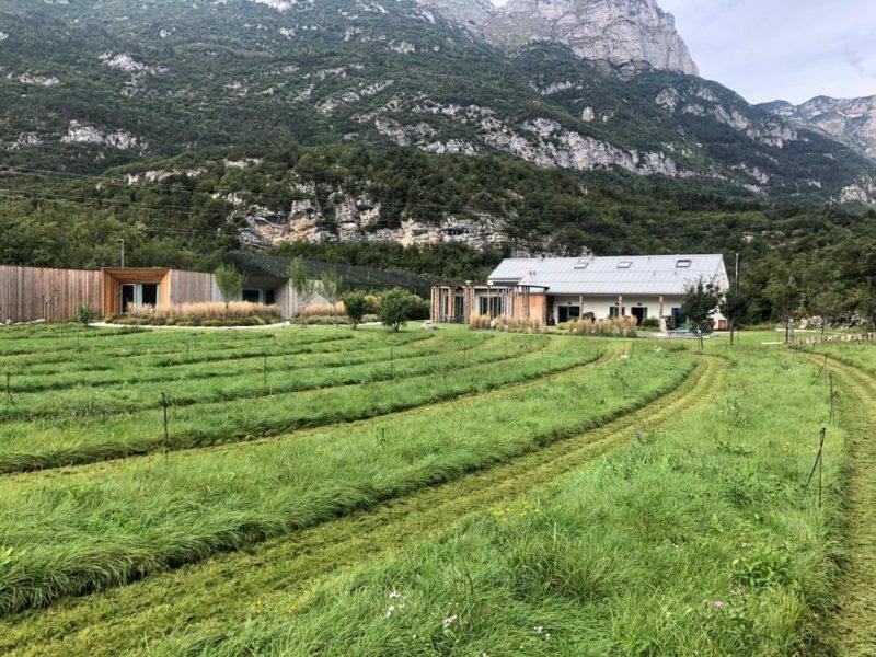 Valter Angeli - Agriturismo La Dolce Mela